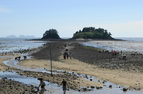 매일 두 차례 바닷길 열린 해남 대섬에 어촌체험공원 조성