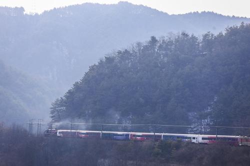[길따라 멋따라] '가심비' 높은 봄맞이 기차여행 3선