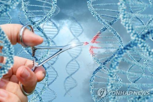 WHO, 유전자 편집 임상 중단·연구 투명성 촉구