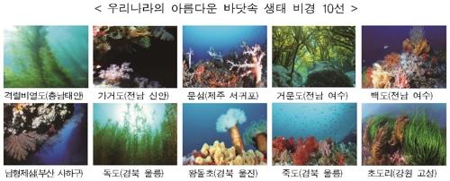 더 아름다운 바닷속…가거도 등 국내 수중 절경 10선 선정