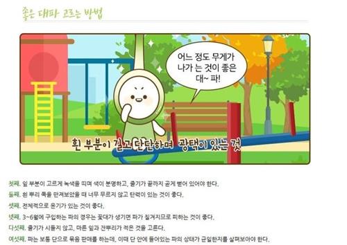 """""""대파, 감기예방·피로회복에 효과"""" aT 소비활성화 나서"""