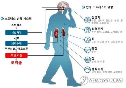 스트레스의 역설? 심장병 막는 호르몬 수용체 2종 발견