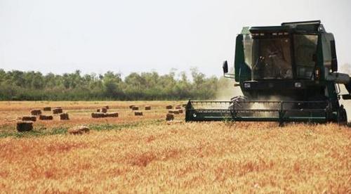 美, '곡물 관세' WTO 분쟁에서 中에 1심 승소(종합)