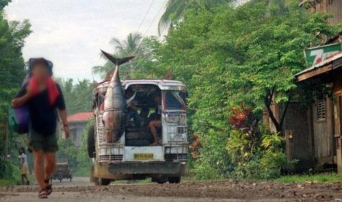 [길따라 멋따라] 여행전문가들이 말리는 '위험한 여행'
