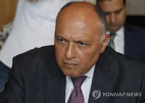 """이집트, 터키 에르도안 비난…""""무르시 사망 관련 무책임한 발언"""""""