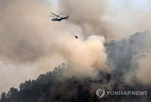 '관광지 지켜라'…키프로스 소방당국 대형산불과 사투