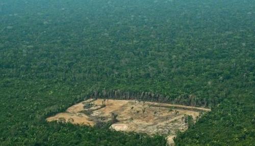 아마존 열대우림 파괴 증가 또 경고…보우소나루 정부 압박