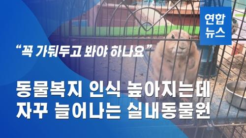 동물복지 인식 높아지는데…늘어나는 실내동물원