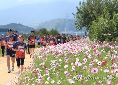 대구 호림강나루공원서 22일 달서 하프 마라톤 대회