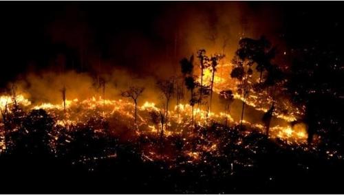 브라질, 부패수사로 조성된 기금 아마존열대우림 보호에 쓰기로