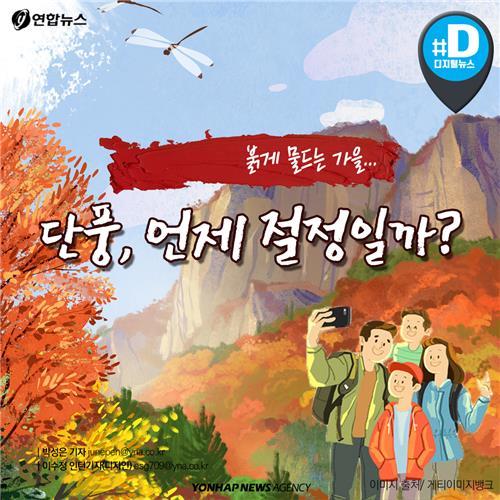 [카드뉴스] 붉게 물드는 가을…단풍, 언제 절정일까?