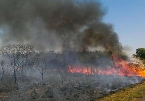 아마존 산불 사태는 진행형…건수 줄었으나 파괴면적 늘어