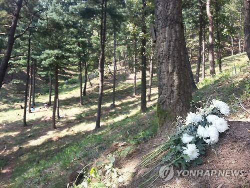 그린케어텍, 소규모 수목장림 조성 시범사업 공모