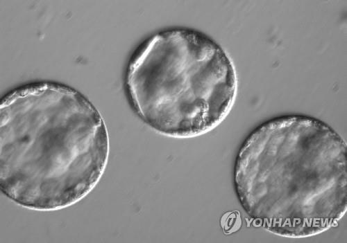 """""""유전 정보 없는 '정크 DNA' 변이도 암 위험 키운다"""""""