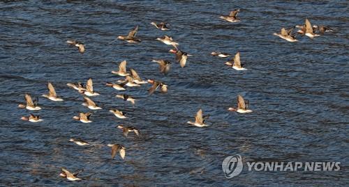 대구·경북 맑은 날씨…일교차 크고 건조한 대기