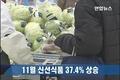 11月物价同比涨3.3% 新鲜食品指数猛涨37.4%