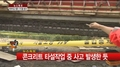 首尔傍花大桥工地坍塌 2名朝鲜族工人死亡