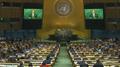 联大连续第12年通过朝鲜人权决议