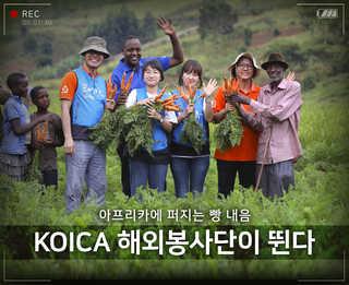 [Y스페셜]아프리카로 간 한국 청년들…개발원조에 '땀 뻘뻘'