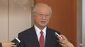 IAEA总干事:朝鲜核武开发进展很快