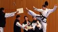 Les deux Corées unies pendant une démonstration de taekwondo à Séoul