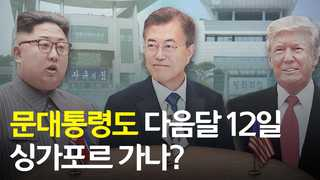 [영상] 문대통령도 다음달 12일 싱가포르 가나?