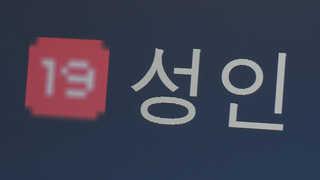 """불법촬영물ㆍ음란물 유포 261건 검거…""""특별단속"""""""