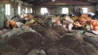 쓰레기더미서 한약재 불법 가공…인증마크 붙여 판매