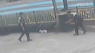 [현장] '집나간' 강아지를 잡아라…경찰·시민 총출동