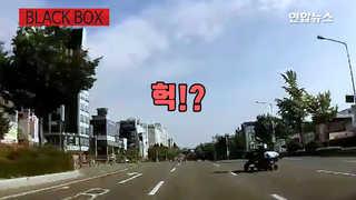 [블랙박스] 8차선 도로에 느닷없이 '슥' 나타난 건?