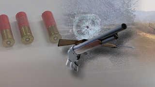 [속보] 봉화 소천면사무소서 괴한 공기총 발사…3명 부상