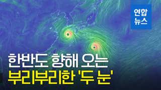 [영상] 부리부리한 '두 눈'…구글 어스에 잡힌 태풍