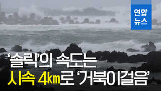 [영상] '솔릭' 속도 시속 4㎞…'거북이걸음'