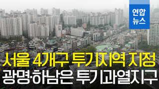 [영상] 서울 4개구 투기지역 지정…광명·하남은 투기과열지구