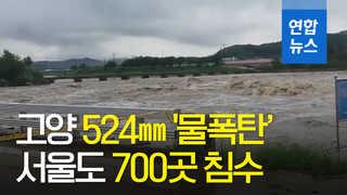 [영상] 서울·경기 이틀 연속 '물폭탄'…피해 눈덩이
