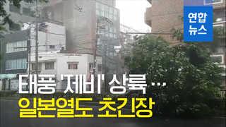 [영상] 25년 만의 최강 태풍 '제비' 일본 상륙…위력은?