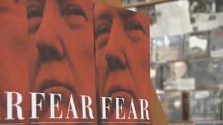 '트럼프 정부 난맥상 폭로' 신간 폭발적 인기