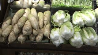 추석 전 농산물 가격 안정세 전환…평년보단 비싸