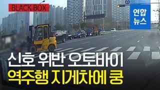 [블랙박스] 역주행 지게차vs신호위반 오토바이…'위험한 충돌'