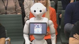 """영국 의회서 연설한 로봇 """"인간은 필요한 존재"""""""