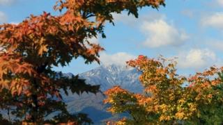 가을에 물들다…설악산 오색빛 단풍 '절정'