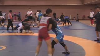 레슬링, 도쿄올림픽 남북단일팀 추진