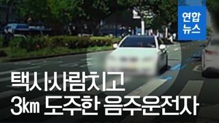[영상] 대낮 아찔한 추격전…만취한 20대, 택시·사람치고 3㎞ 도주