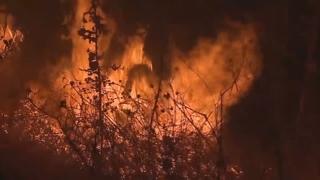 미국 캘리포니아 대형산불…화염 속 아찔한 대피행렬