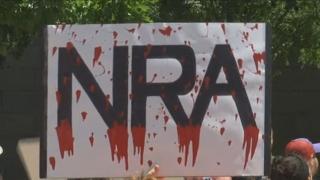 '민심의 심판'…미국 총기규제 탄력받나