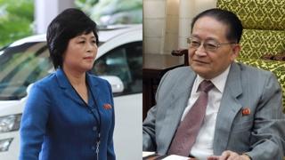 북한 고위급 리종혁ㆍ김성혜 오늘 방남…나흘간 체류