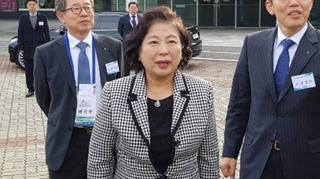 금강산관광 스무돌…방북단, 행사마치고 오늘 귀환