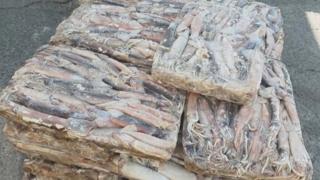 중국산 오징어 국내산 둔갑…유명 중식당에 유통
