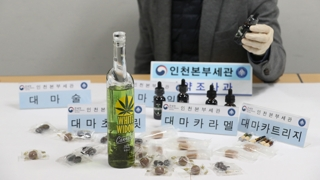 해외 대마합법화 이후 대마 밀반입 4배 급증