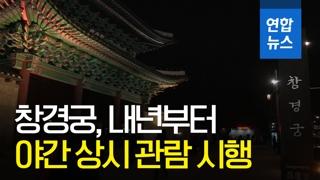 [영상] 창경궁, 내년부터 야간 상시 관람 시행